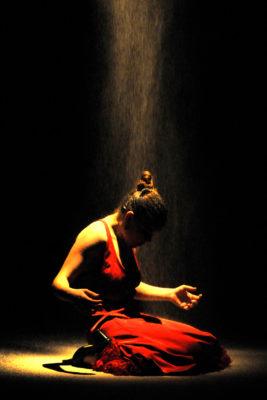 fotografía flamenca