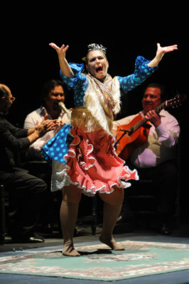 fotografía flamenco
